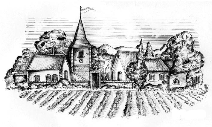 葡萄素描绘画步骤